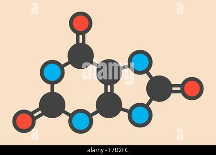 Uric acid molecule. High blood levels lead to gout disease. Stylized skeletal formula (chemical structure). Atoms - Stock Photo