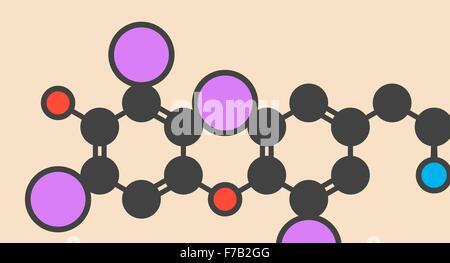 Thyroxine (T4, levothyroxine) thyroid hormone molecule. Prohormone of thyronine (T3). Used as drug to treat hypothyroidism. - Stock Photo