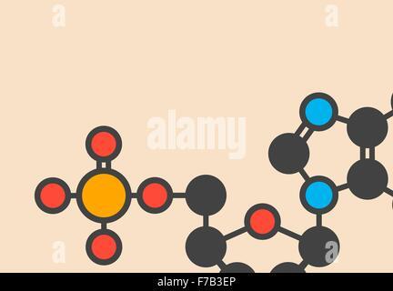 Deoxyguanosine monophosphate (dGMP) nucleotide molecule. DNA building block. Stylized skeletal formula (chemical - Stock Photo