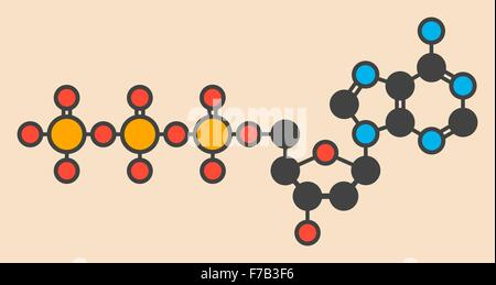 Deoxyadenosine triphosphate (dATP) nucleotide molecule. DNA building block. Stylized skeletal formula (chemical - Stock Photo