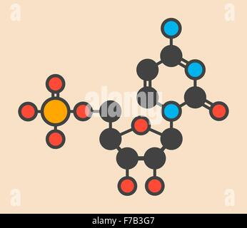 Cytidine monophosphate (CMP, cytidylate) RNA building block molecule. Stylized skeletal formula (chemical structure). - Stock Photo