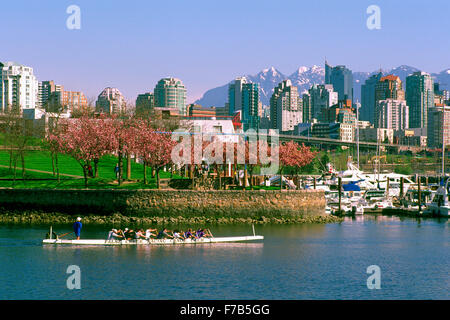 Vancouver City Skyline, BC, British Columbia, Canada - Dragon Boat Practice in False Creek at Granville Island, - Stock Photo