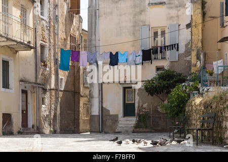 Pigeons feeding in a back street in Corfu Town. Corfu - Stock Photo
