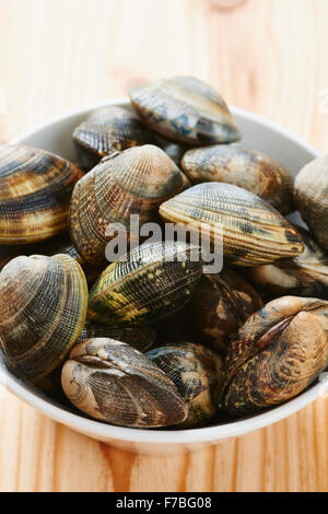 Raw clams in white bowl - Stock Photo