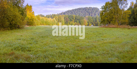Beautiful fresh early morning lush vivid vibrant green meadow landscape panorama view. Junction of Skallsjö Prästväg - Stock Photo
