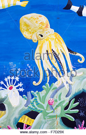 ... Sealife in the Aquarium Wall Art - Stock Photo & Sealife in the Aquarium Wall Art Stock Photo: 90641640 - Alamy