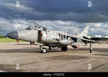 BAe Sea Harrier F/A.2 ZH806 (007) 801 NAS, RNAS Yeovilton. - Stock Photo
