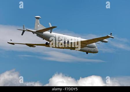 BAe Systems Nimrod MRA4, ZJ518. - Stock Photo
