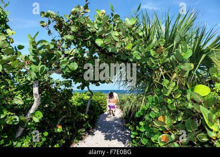 Vero Beach Florida North Hutchinson Orchid Island Ladybug