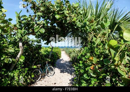 Vero Beach Florida North Hutchinson Orchid Island Mulligan