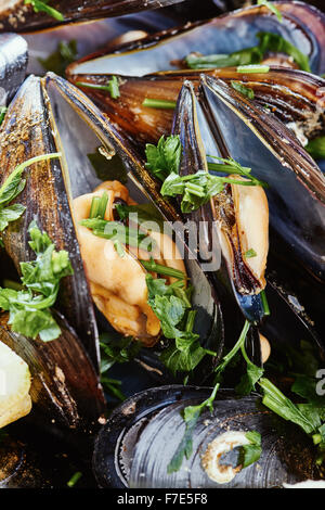 Mussels close up and parsley - Stock Photo