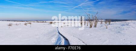 A track through the frozen landscape of the Hautes Fagnes (Hoge Venen, Hohes Venn, High Fens) in the east of Belgium. - Stock Photo