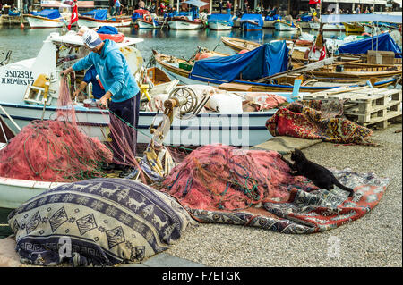 Tug or war: Fisherman pulling his nets catches the attention of the local cat! - Stock Photo