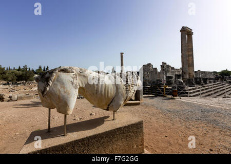 Stone lion in the ruins of the Temple of Apollo at Didyma, an ancient Greek sanctuary - Stock Photo