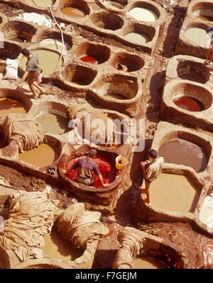 Workers tan leather in tanning pits. Fes, Morocco. Fes al Bali, Morocco. - Stock Photo