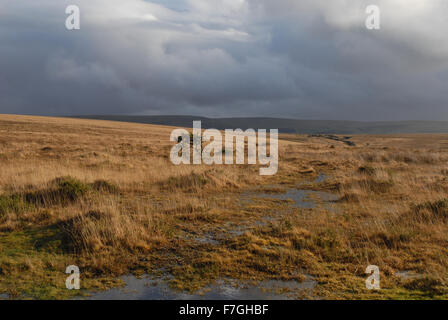 View over the moors in winter, Dartmoor National Park, Devon, England - Stock Photo