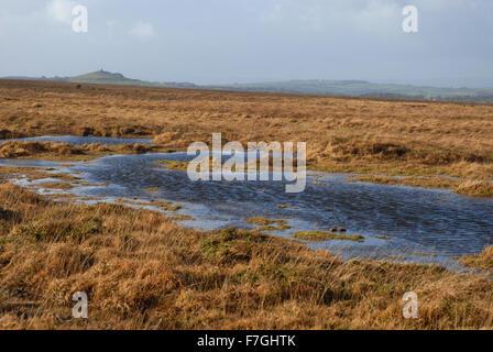 The moors in winter, Dartmoor National Park, Devon, England - Stock Photo