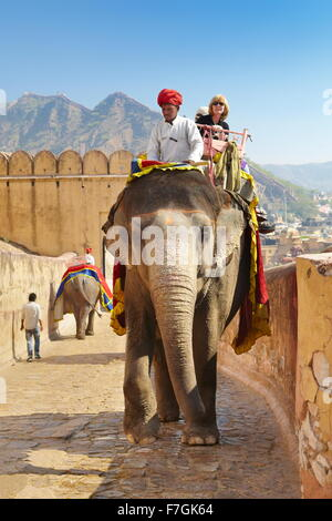 Tourists riding an elephant (Elephas maximus) to the Amber Fort Amber Palace, Amer 11km from Jaipur, Rajasthan, - Stock Photo