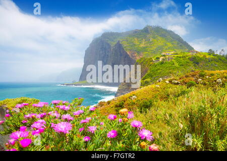 Madeira - landscape with flowers and cliff coastline near Ponta Delgada, Madeira Island, Portugal - Stock Photo