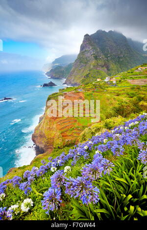 Madeira - landscape with flowers near Ponta Delgada, Madeira Island, Portugal - Stock Photo