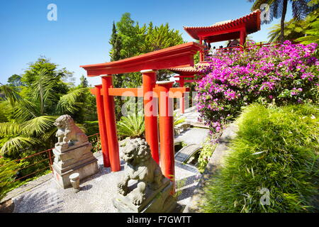 Japanese japan oriental tropical garden - Monte, Madeira Island, Portugal - Stock Photo