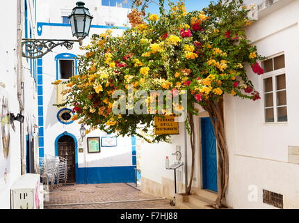 Blooming flowers at Albufeira old town, Algarve, Portugal - Stock Photo