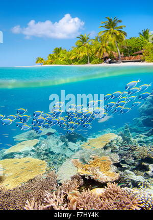 Maldives Island - tropical underwater view with reef - Stock Photo