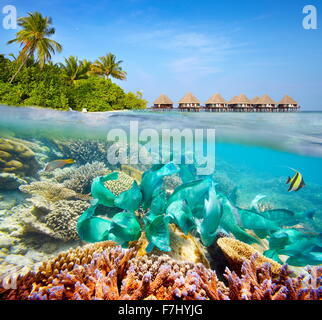 Underwater scenery at Maldives Island - Stock Photo