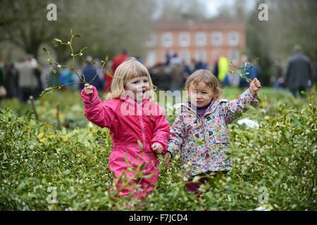 Tenbury Wells Mistletoe market Fun in the Mistletoe for Evie Haycocks aged 2 of Powis and Alice Ng aged 2 of London - Stock Photo