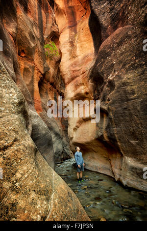 Kanarra Creek Canyon with hiker. Utah. Dixie National Forest - Stock Photo