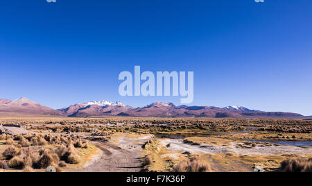 High Andean tundra landscape in the mountains of the Andes. The weather Andean Highlands Puna grassland ecoregion, - Stock Photo