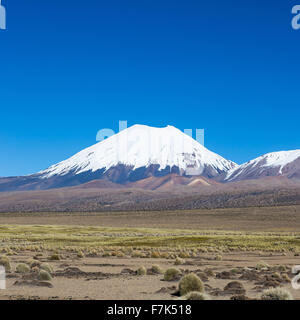 Parinacota volcano. High Andean landscape in the Andes. High Andean tundra landscape in the mountains of the Andes. - Stock Photo