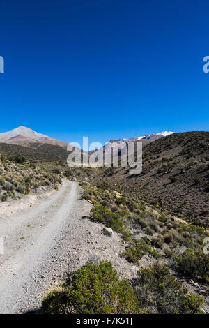 Small path in the Andes. The weather Andean Highlands Puna grassland ecoregion, of the montane grasslands and shrublands - Stock Photo