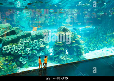 Children looking at The Dubai Mall Aquarium, Dubai, United Arab Emirates, Middle East - Stock Photo