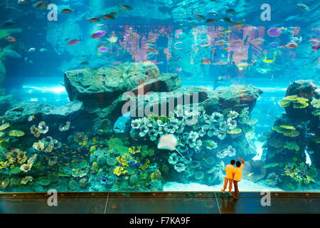 Children looking at underwater world in the Dubai Mall Aquarium, Dubai, United Arab Emirates - Stock Photo