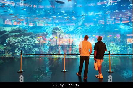 The Dubai Mall Aquarium, Dubai, United Arab Emirates, Middle East - Stock Photo