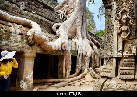 Angkor - monumental city which remained after the old capital of Khmer Empire, Ta Prohm Temple, Angkor, Siem Reap, - Stock Photo