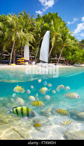 Thailand beach and underwater sea view with fish, Ko Samet Island, Thailand, Asia - Stock Photo
