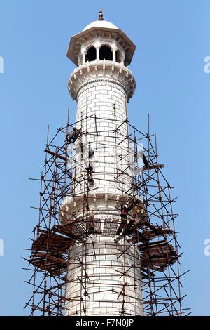 Construction work at Taj - Stock Photo