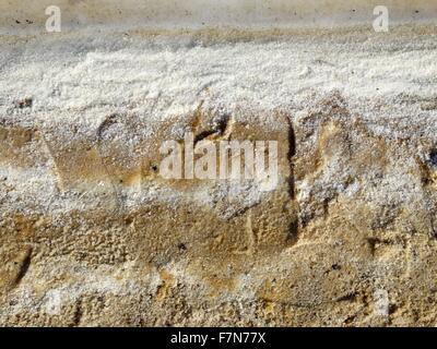 Dead sea salt deposits; Israel 2014 - Stock Photo