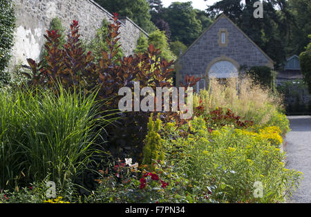 Plants growing in July at Bodnant Garden, Clwyd, Wales. Created by five generations of one family, Bodnant sits - Stock Photo