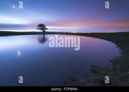 Dew pond near Ditchling Beacon, East Sussex, at night, with the moon reflected in the water, and city lights glowing - Stock Photo