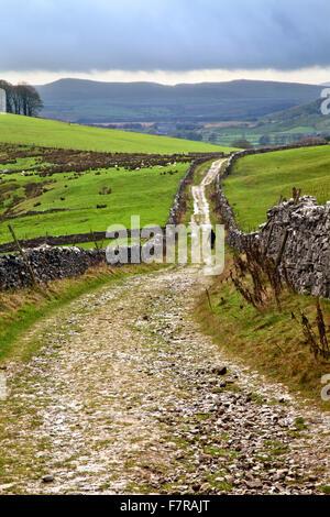 Lone Walker on Horton Scar Lane near Horton in Ribblesdale North Yorkshire England - Stock Photo