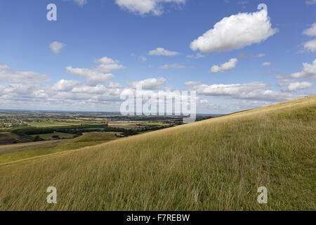 View across the chalk grassland, looking towards the Vale of the White Horse, from White Horse Hill, Uffington, - Stock Photo