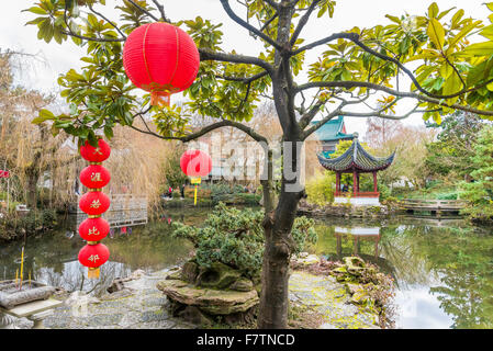 Chinese lanterns, Dr Sun Yat Sen Garden and Park, Chinese New Year Celebration, Vancouver, British Columbia, Canada - Stock Photo