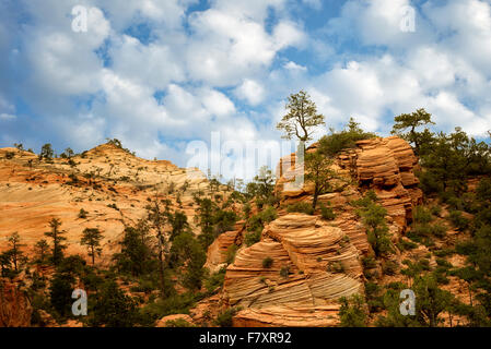View of rock formations in Zion National Park, Utah - Stock Photo