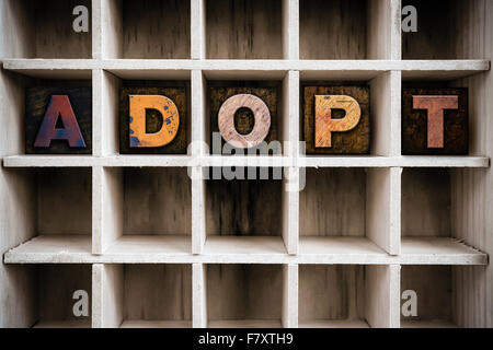 The word 'ADOPT' written in vintage ink stained wooden letterpress type in a partitioned printer's drawer. - Stock Photo