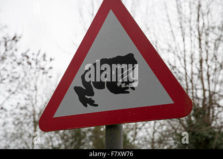 Toad warning road sign in Wales - Stock Photo