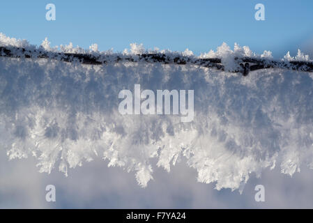 Hoar frost on a barbed wire fence, Wallowa Valley, Oregon. - Stock Photo