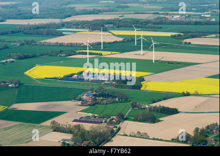 landscape near herrenholz, vechta district, niedersachsen, germany - Stock Photo